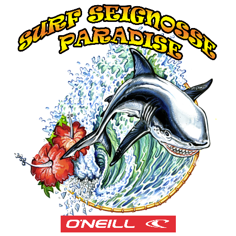 Surf Seignosse Paradise